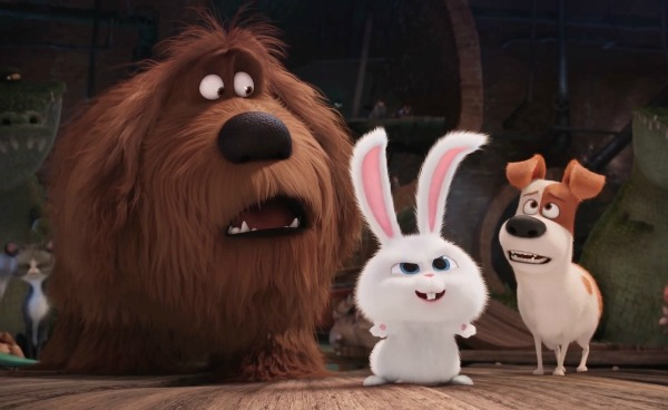 The Secret Life Of Pets Tall Writer